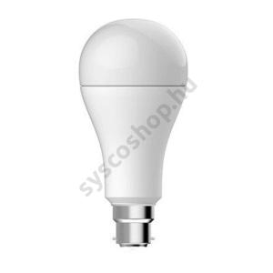 LED 16W/827 B22 1521lm 2700K LED16/A67/220-240V/BX ECO - Ge/Tungsram - 93064001